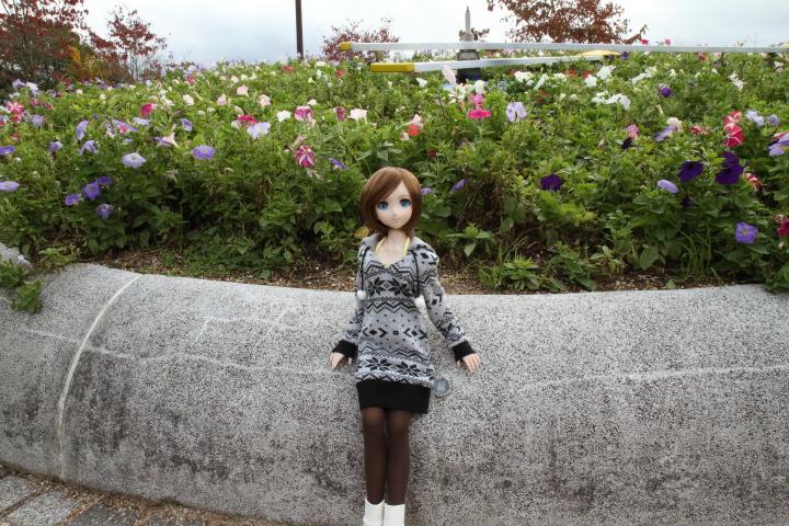 IMG_4454.jpg