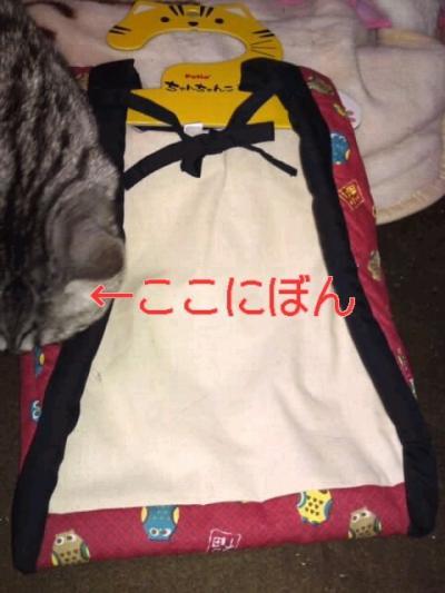 image_20130331221734.jpg