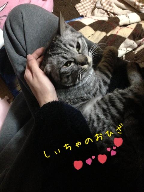 image_20130422230826.jpg