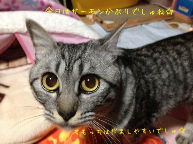 image_20130425222004.jpg