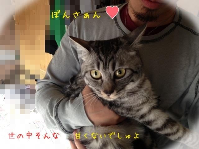 image_20130429221126.jpg