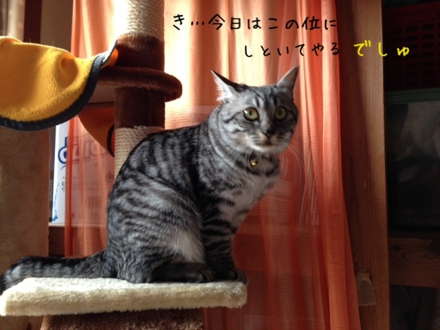 image_20130503223142.jpg