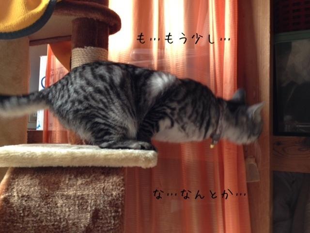 image_20130503223143.jpg