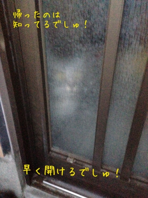 image_20130509221608.jpg