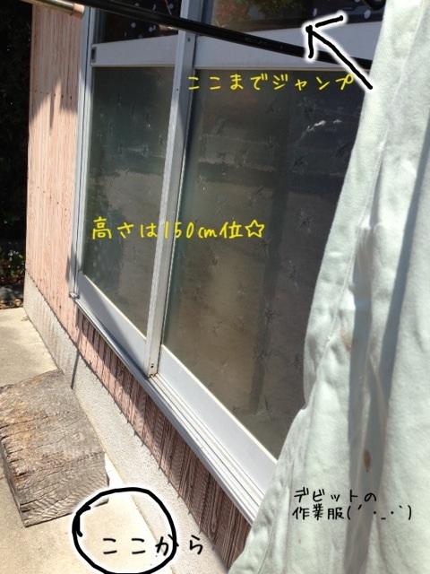 image_20130512220513.jpg