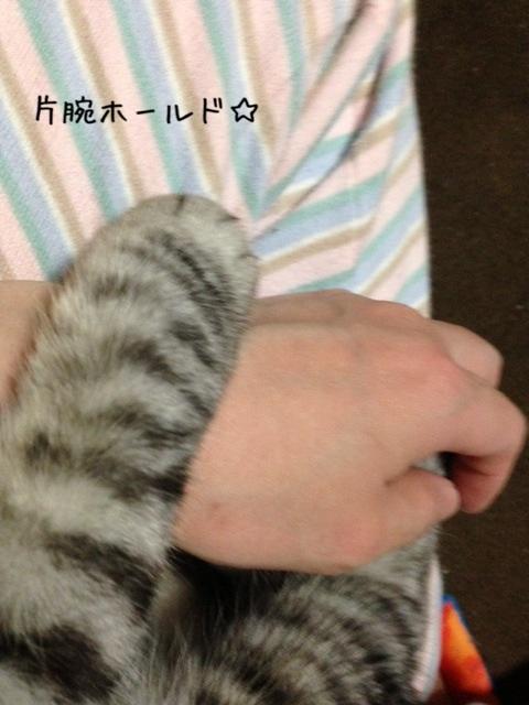 image_20130517223018.jpg