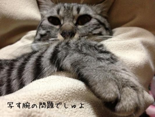 image_20130519222315.jpg