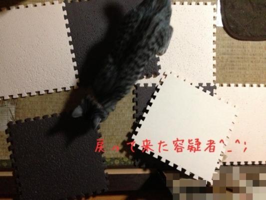image_20130522222335.jpg