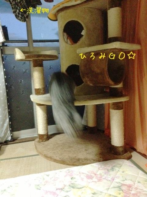 image_20130524233017.jpg