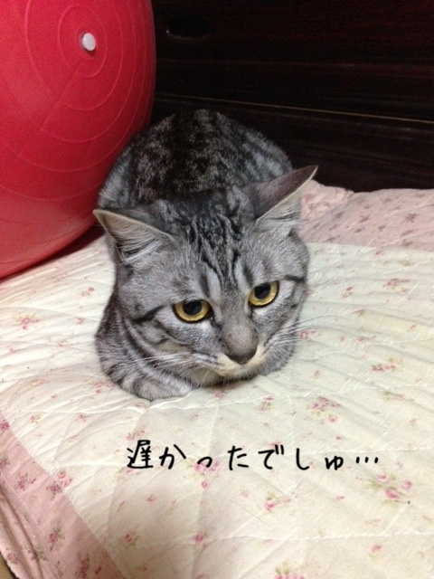 image_20130603221033.jpg