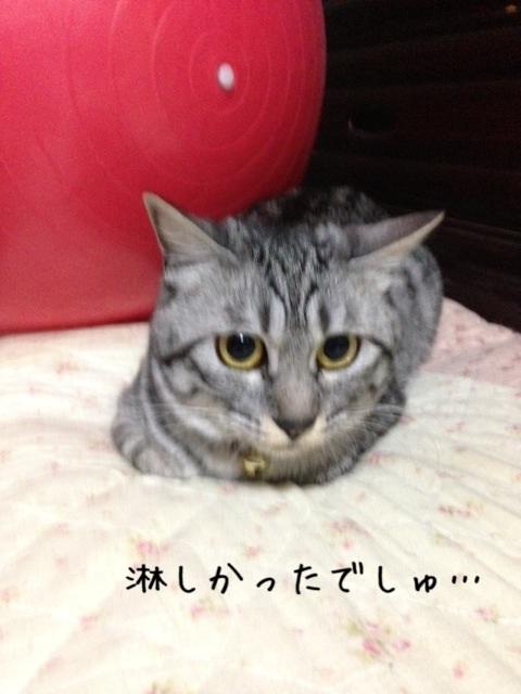 image_20130603221148.jpg