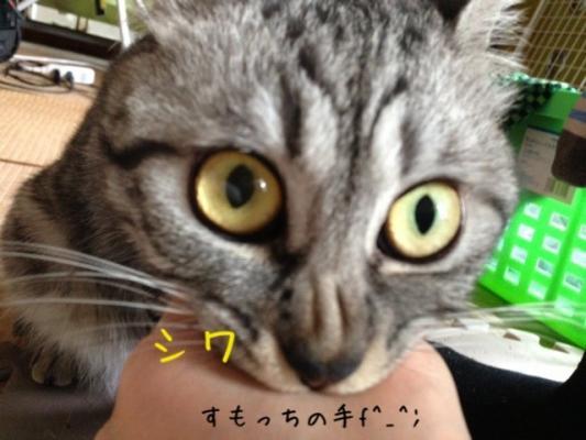 image_20130608223235.jpg