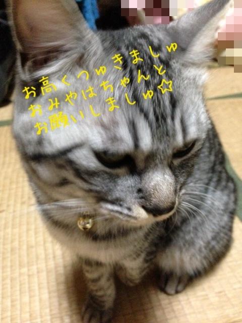 image_20130611230428.jpg