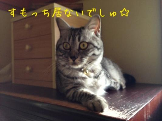 image_20130612221411.jpg