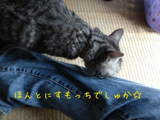 image_20130616224412.jpg