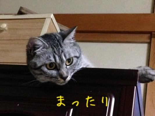 image_20130628214757.jpg