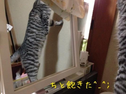 image_20130630215419.jpg