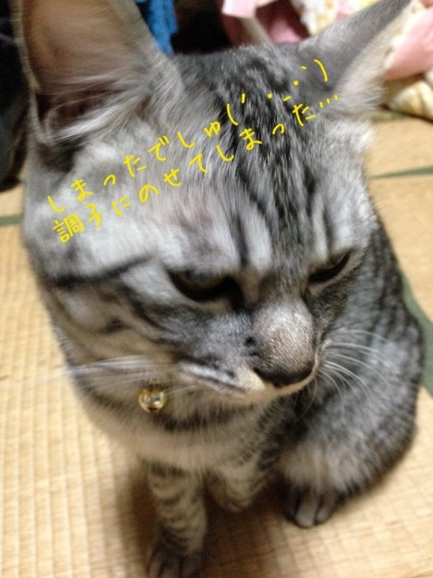 image_20130706225950.jpg