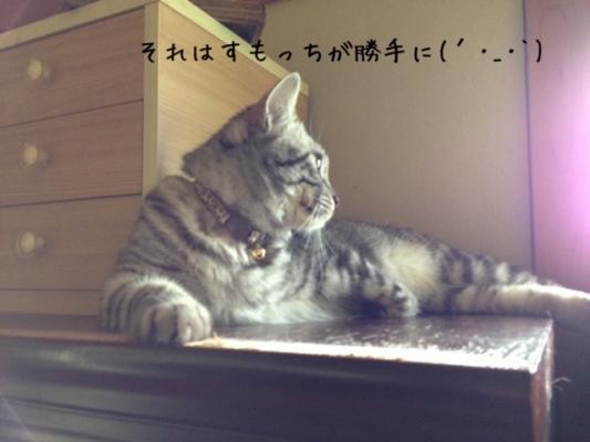 image_20130707213708.jpg