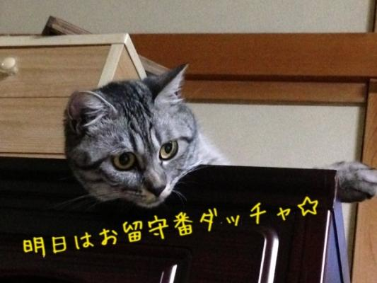 image_20130712230302.jpg