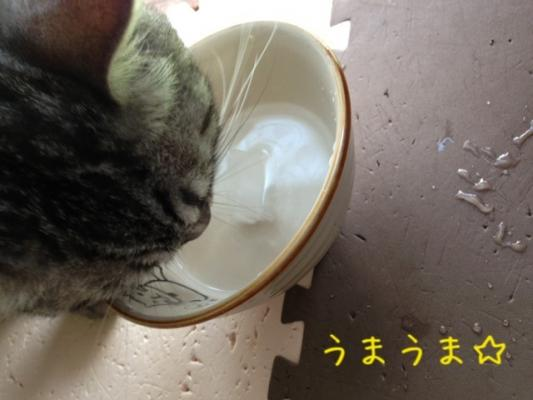 image_20130721151752.jpg