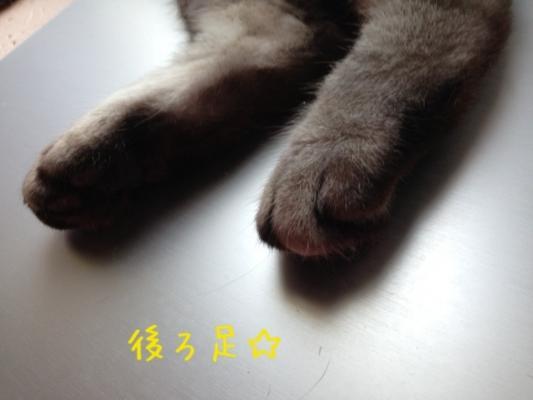 image_201307232223192da.jpg