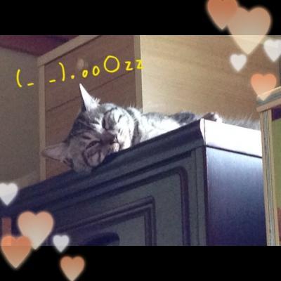 image_20130725215031.jpg