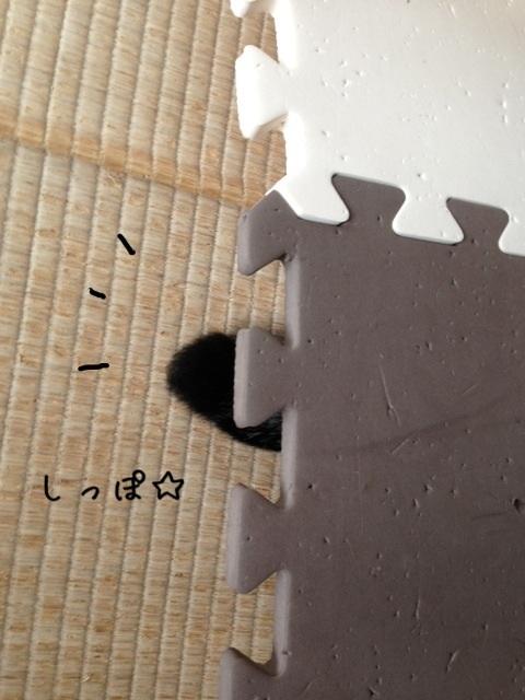 image_20130727215435.jpg