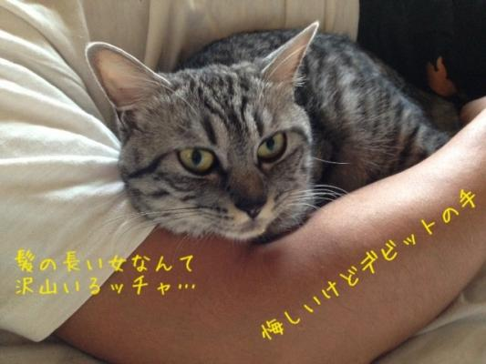 image_20130802222504934.jpg