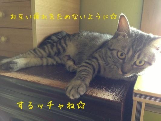 image_20130807221207c88.jpg