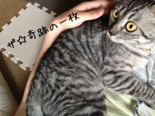 image_20130818222714f69.jpg