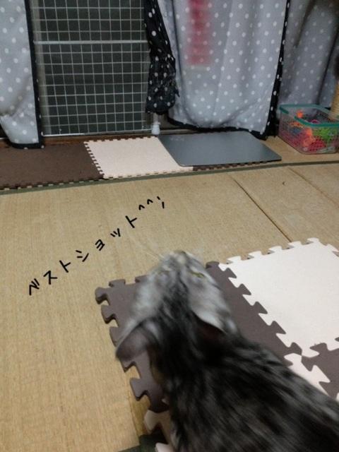 image_20130828220701e47.jpg