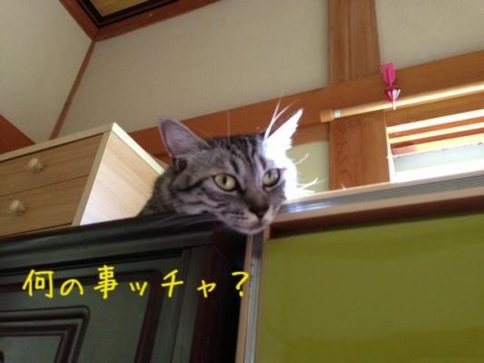 image_20130907220943e03.jpg