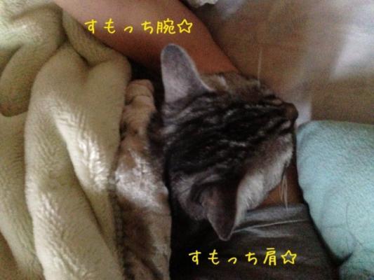 image_20130911224627d42.jpg