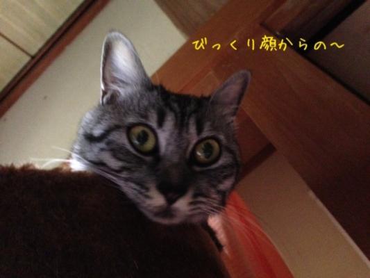 image_201309172311353f2.jpg