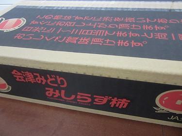 20141106柿 (1)