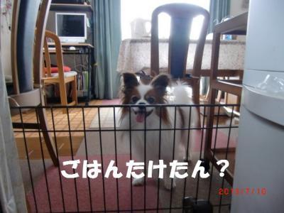 001_convert_20130725225027.jpg