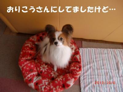 014_convert_20131101225502.jpg