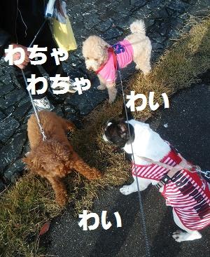 DSC_5691.jpg