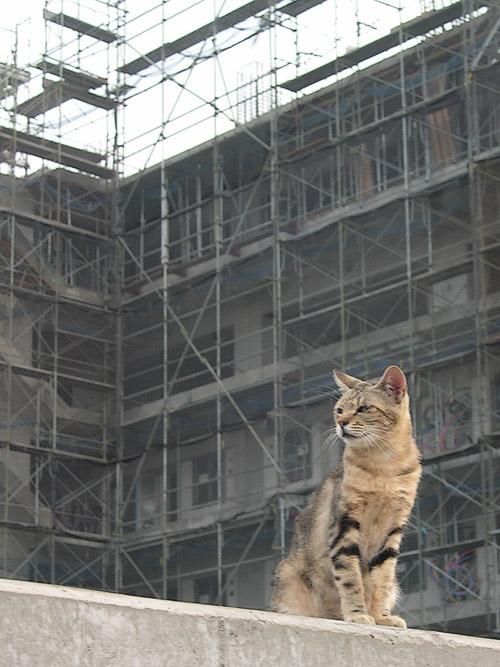 廃墟建設中3