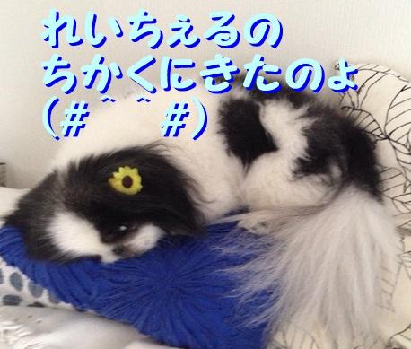 IMG_5782.jpg