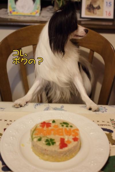 IMG_4327ケーキケーキ