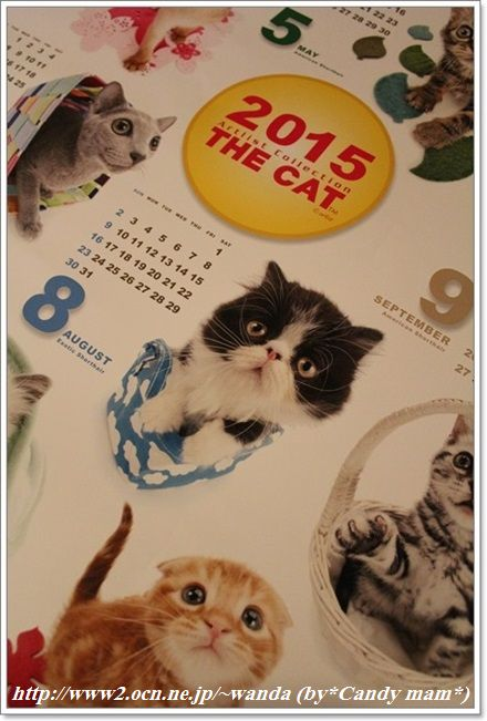 THE CAT 巨大ポスターカレンダー2015