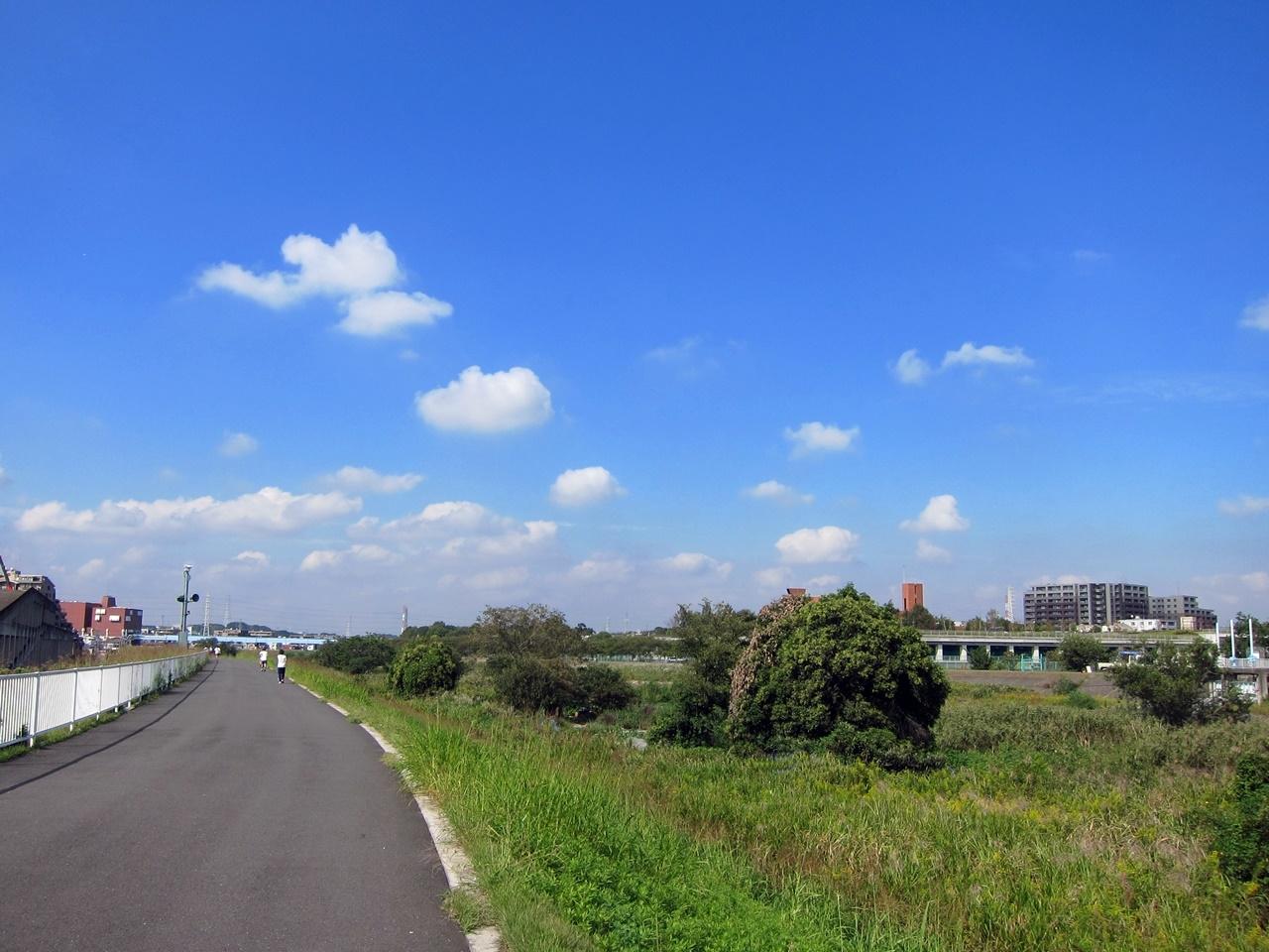 2010秋-01