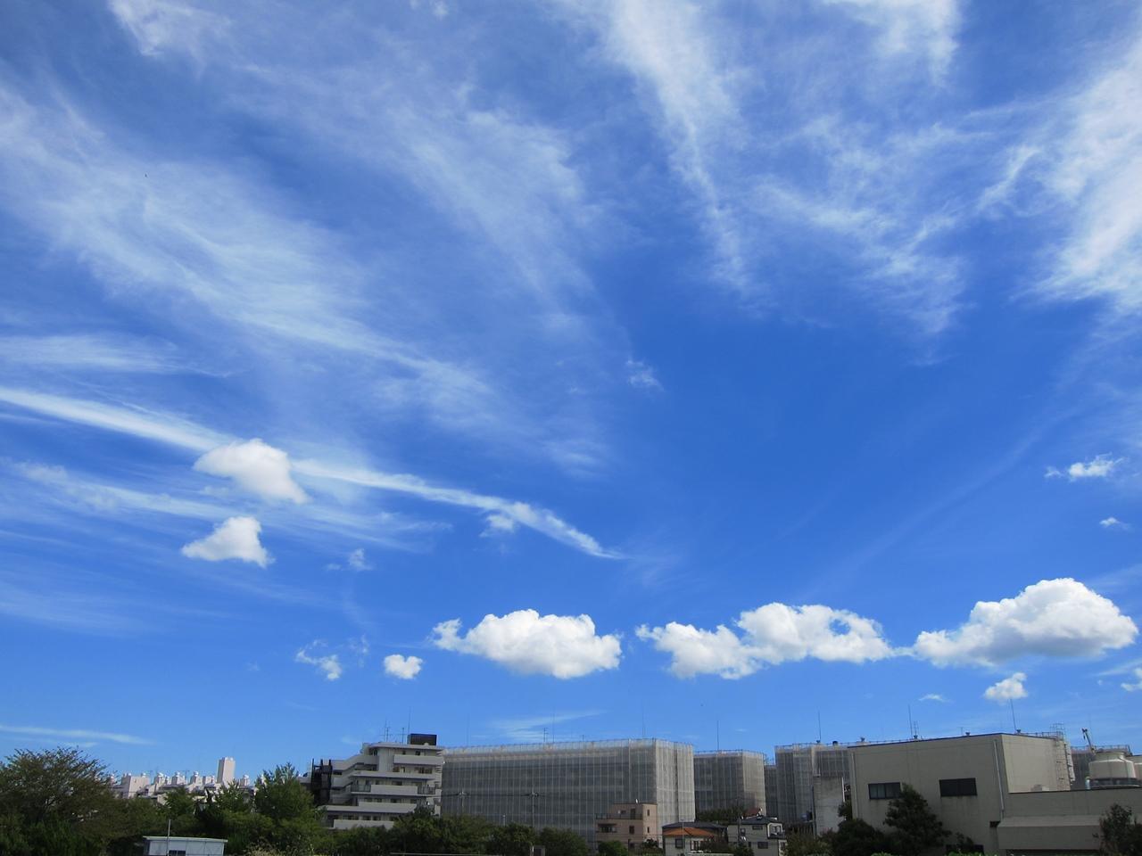 2010秋-04