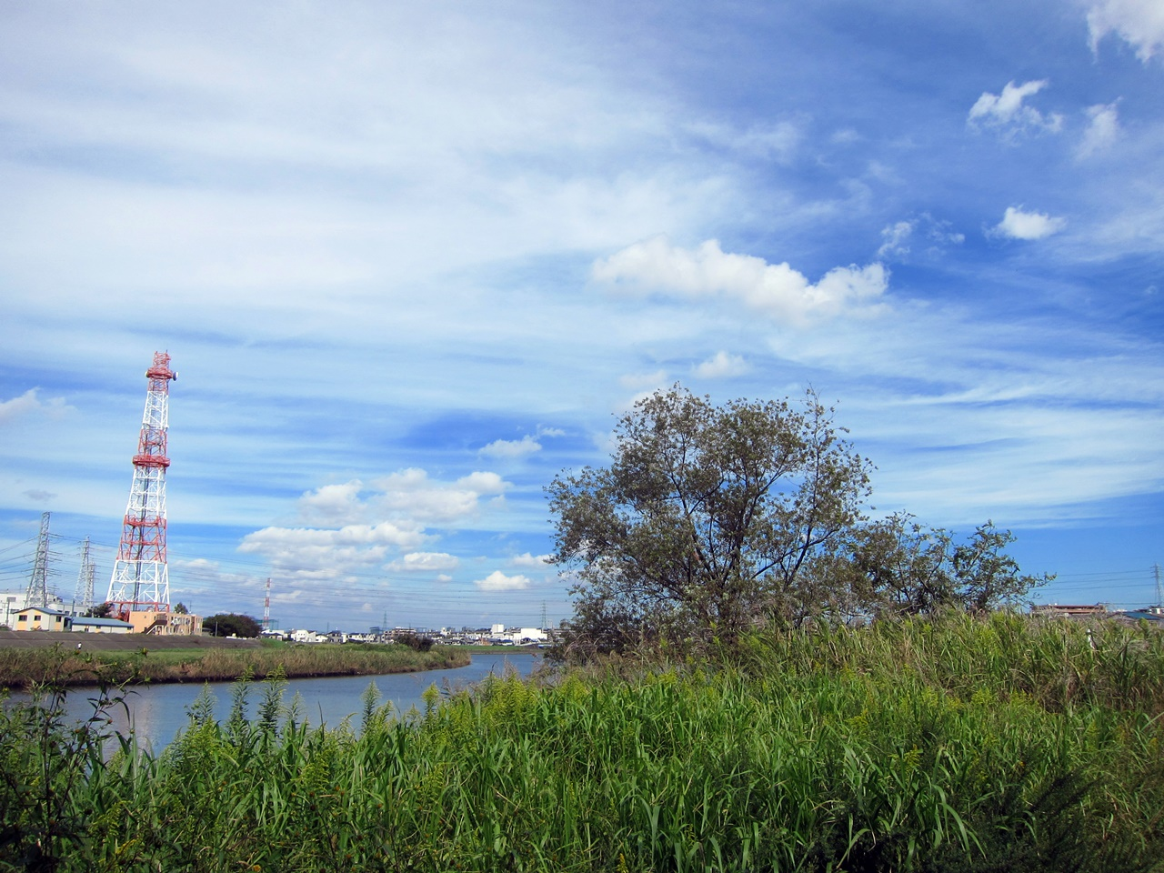 2010秋-05
