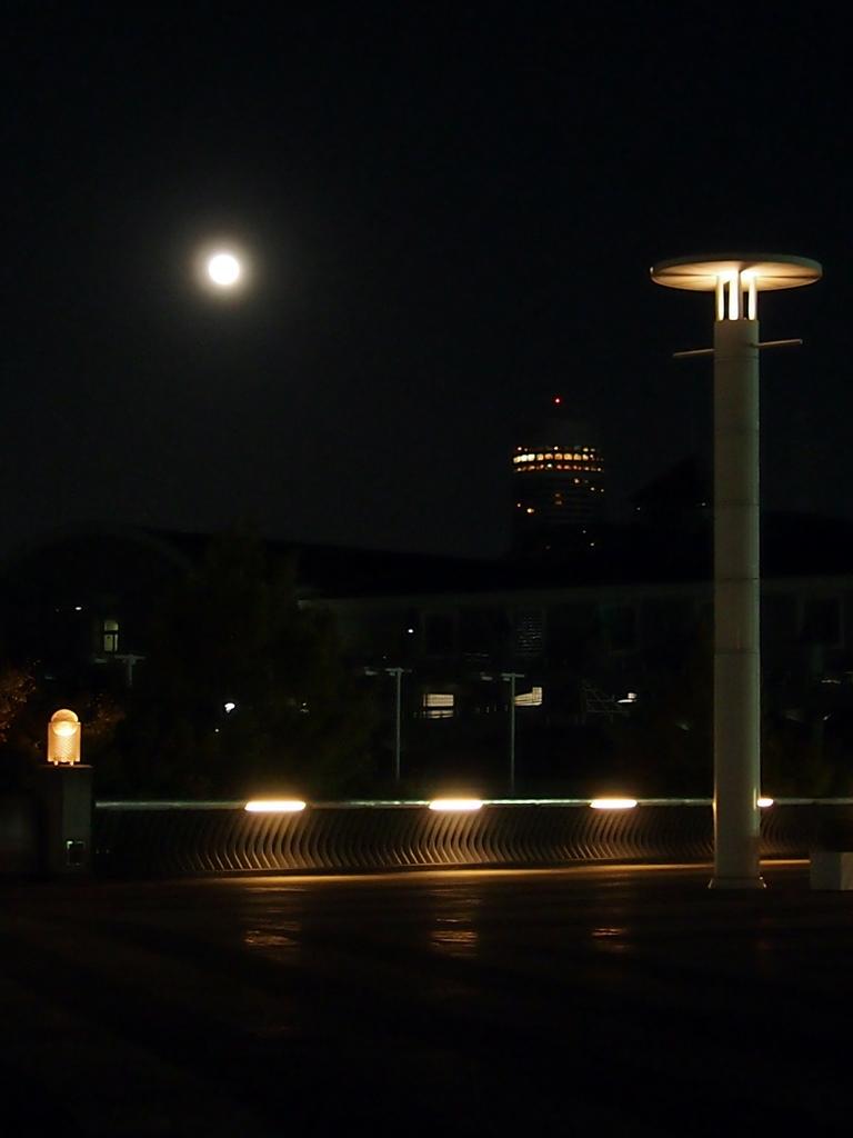 2013秋-14