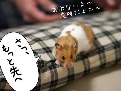 ぷんぷん4