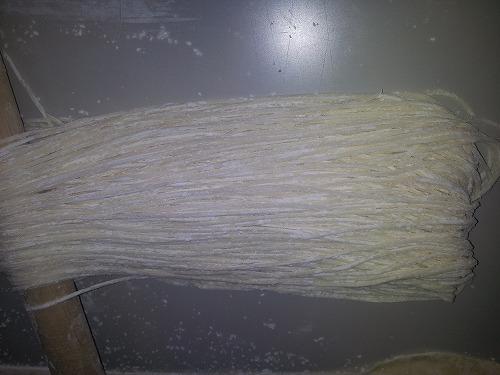 塩ラーメン20130606_161850