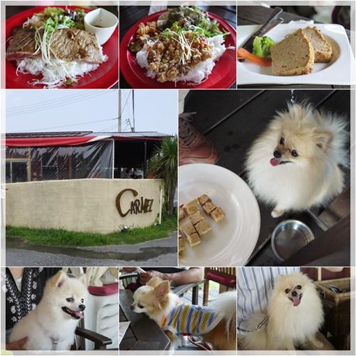 cats2_201308051659409ce.jpg
